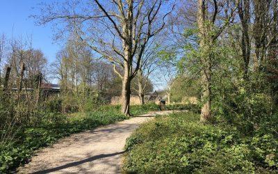 Wandeling Utrecht: Rondje Halve Maan en Oog in Al