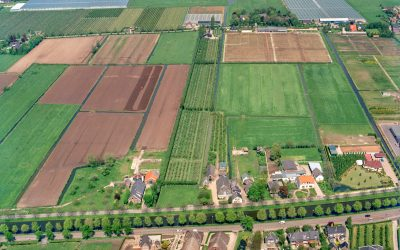 De geschiedenis van Leidsche Rijn: een Vinex-avontuur met happy end