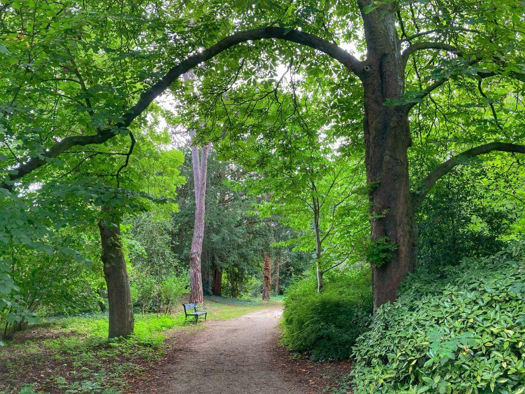 Juliana park - weelderige natuur