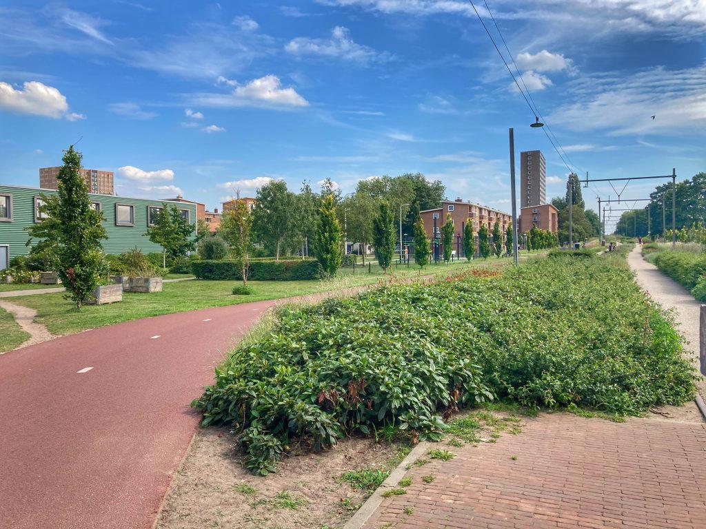 Oosterspoorbaanpark - fietspad