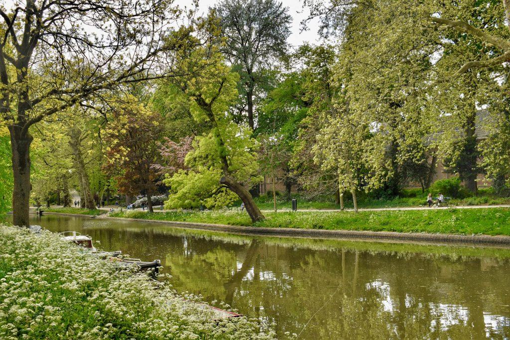 Wandelen met je hond in Utrecht langs de Singel
